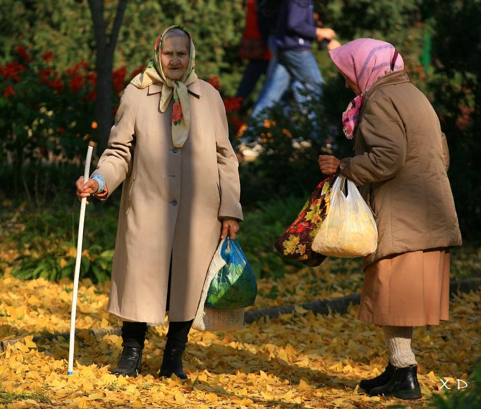 старики ростовская область