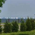 с 30 апреля по 4 мая в Таганроге пройдет 5-й этап Кубка России в олимпийском классе яхт «Финн»
